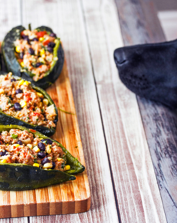 Turkey & Quinoa Stuffed Plobano Peppers